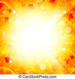 Maple leaves explosion background