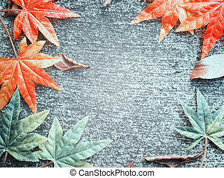 Maple leaves fall on cement ground background