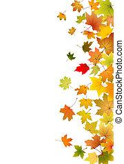 Maple leaves falling - Maple autumn falling leaves, vector...