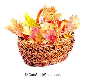 Maple leaves in basket