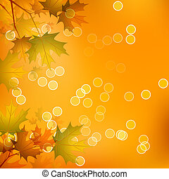 Maple Leaves of Autumn