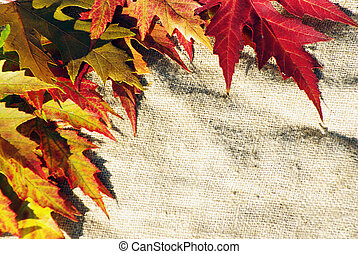 leaves on sack background