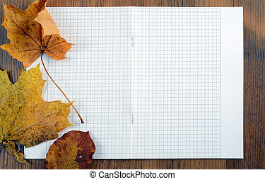 maple leaves on white paper background with copyspace