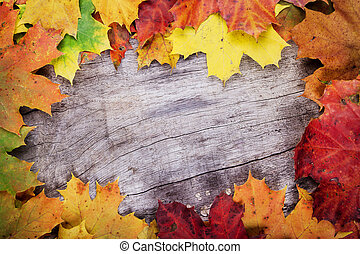 Maple leaves on wooden surface
