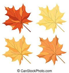 Maple leaves set