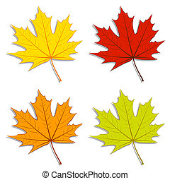 Maple Leaves - Set of colorful maple leaves. EPS10 vector.
