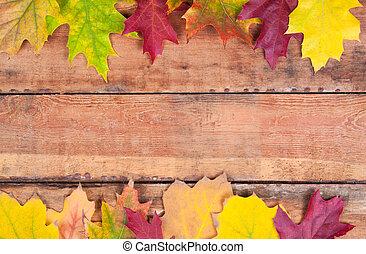 maple outono sai, sobre, antigas, madeira, fundo, com, espaço cópia