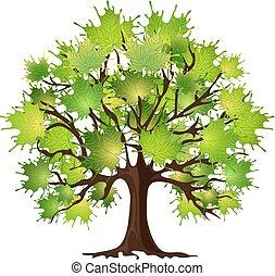 Maple tree on white