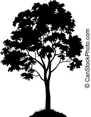 Maple Tree Silhouette - Maple Tree with Leaves and Grass...