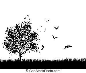 Maple Tree With Bats