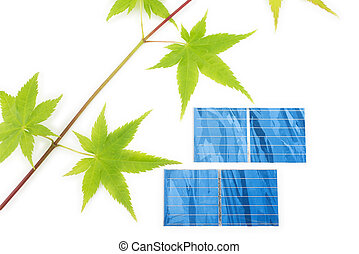 Maple twig and two solar cells on a white background