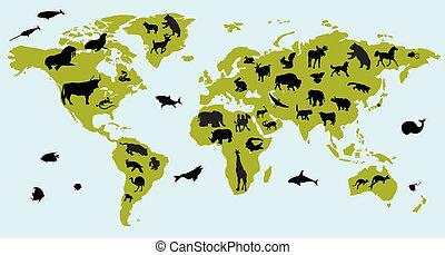 mappa, animali, mondo, immagini