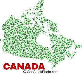 mappa canada, canapa, foglie, mosaico