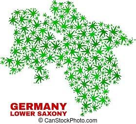 mappa, più basso, terra, sassonia, collage, foglie, marijuana