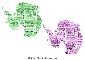 mappa, viola, -, illustrazione, antartide, vettore, verde, continente