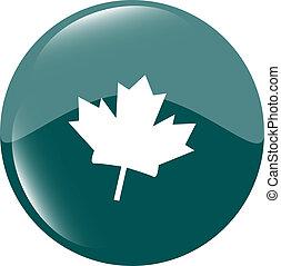 mapple leaf icon glassy green button