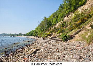 mar báltico, litoral, em, gdynia