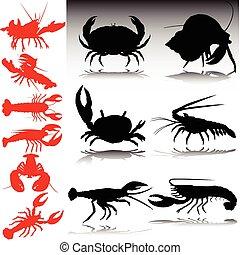 mar, caranguejos, vermelho, e, pretas, vetorial