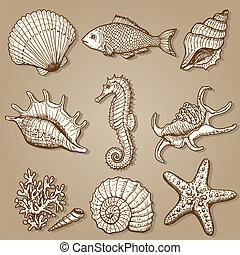 mar, collection., original, mão, desenhado, ilustração
