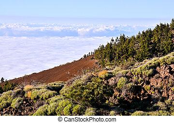 Mar de Nubes, Sea Cloud on the High Mountains Phenomenon in Tenerife, Canary Island