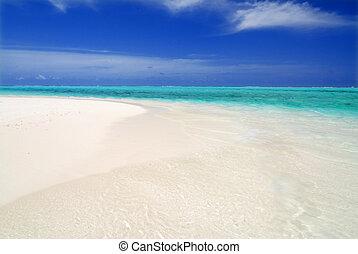 mar, e, maldives