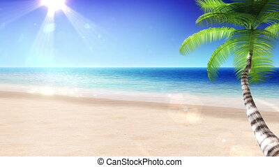mar, e, sun., palma, árvore., looped.