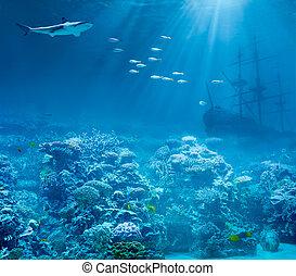 mar, o, océano, submarino, con, tiburón, y, hundido,...