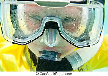 mar rojo, snorkeler.