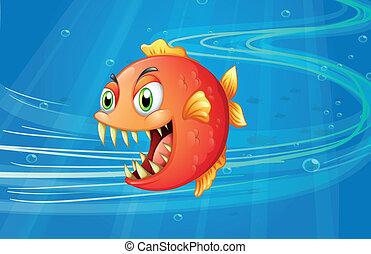mar rosso, piranha, sotto