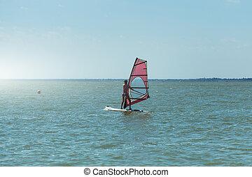mar, windsurf, windsurfing, velas, resort., jovem, férias, tábua, verão, menina, atlético, adelgaçar, abertos
