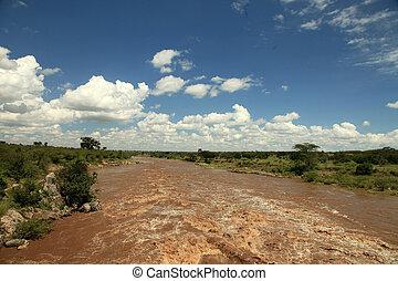 Mara River - Kenya - Mara River - Maasai Mara National Park...