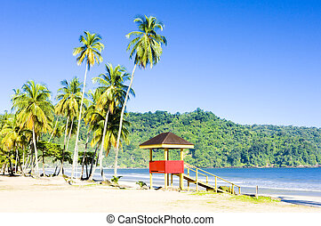 Maracas Bay, Trinidad - cabin on the beach, Maracas Bay,...