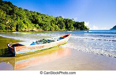 maracas, bucht, trinidad