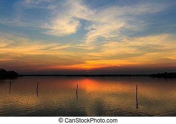 marais, et, coucher soleil