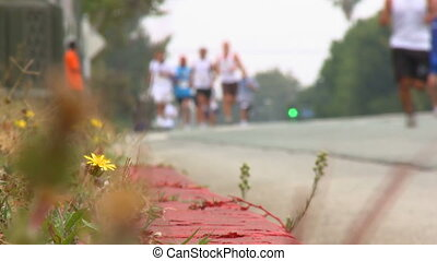 Marathon Runners from the Curb - Low angle shot, from the...