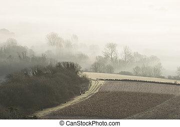 maravilloso, brumoso, inglés, paisaje rural, en, salida del sol, en, invierno, con, capas, rodante, por, el, campos