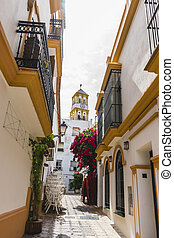 marbella, strade, andalucia, architettura, fiori bianchi, spagna