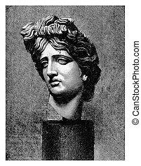 Marble head of Apollo Belvedere, ancient Roman copy - Apollo...