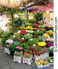 marché fleur, amsterdam