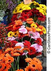 marché fleur