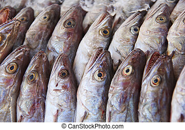 marché, local, fish, maquereau