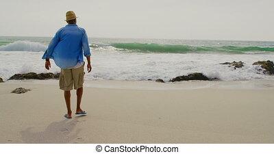 marche, africaine, vue, arrière, américain, homme, 4k, plage
