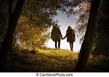 marche, amants, parc, automne, tenant mains