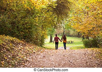 marche, amour, jeune couple, forêt automne, tenant mains
