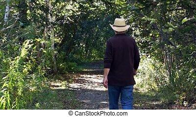 marche, arbre, bas, sentier, revêtu, homme