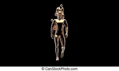 marche, concept, 3d, homme, xray, anatomie