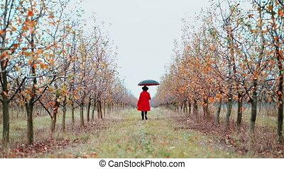 marche, concept, season., pomme, automne, girl, loin,...