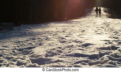 marche, coup, hiver, pittoresque, ceci, ensoleillé, couple, parc, jeune, neige, day., tenant mains, amour