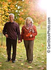 marche, couple, parc, automne, portrait, personne agee, heureux