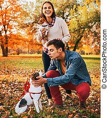 marche, couple, parc, chiens, automne, jouer, heureux